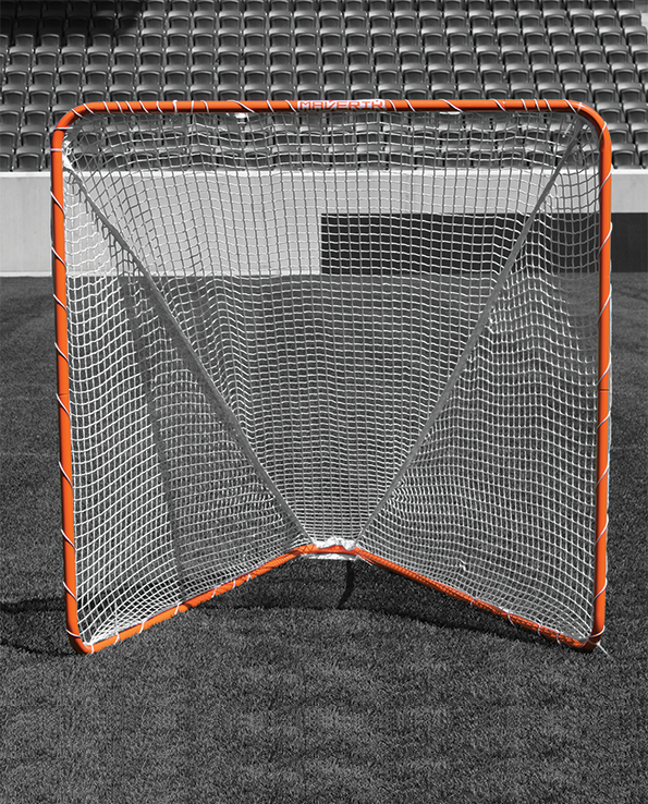 Backyard_Goal_01_B&W